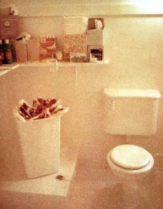 judy chicago menstruation bathroom